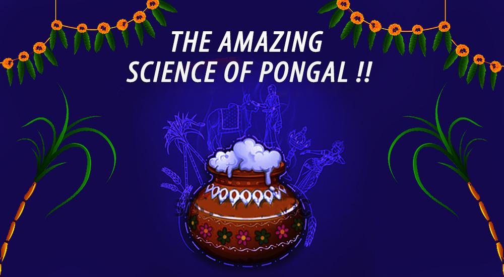 pongal1